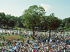 Image of a crowd of people in a park