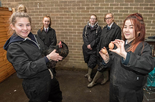 Royton and Crompton school pupils getting their hands dirty down on the farm