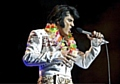 NUMBER 1 . . . Chris Connor as Elvis