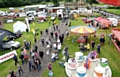 A scene from last year's Saddleworth Show