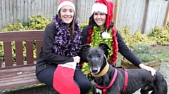Greyhound Jess is pictured with (from left) Supporter Relations Officers Nicola Hardman and Louise Danson