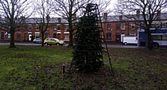 The much-maligned Christmas tree at Wren's Nest in Shaw