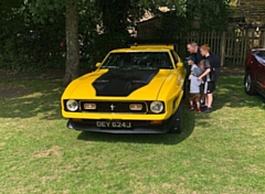 Have a wander�around the park checking out the magnificent motors