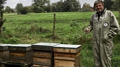 Rev Dr Mike Donmall with hives